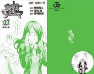 Volume 17 Book Cover