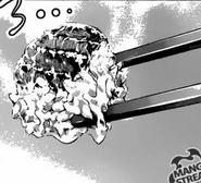 Piece of Hitsumabushi