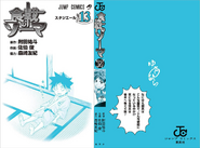Volume 13 Book Cover