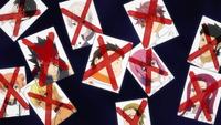 Tōtsuki Rebels Eliminated (Anime)