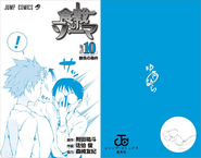 Volume 10 Book Cover