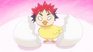 Baby Chick Soma