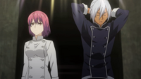 Akira vs. Hisako (anime)