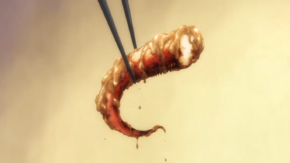 Grilled Squid Tentacles Dressed in Peanut Butter (anime)