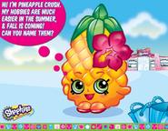 Pineapple Crush Greeting