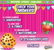 Shopkins Episode Challenge Answers