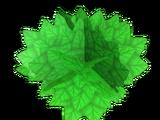 Scrap Leaves