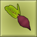 Item icon beet.png