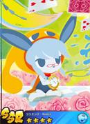 Koriente - Rabbit