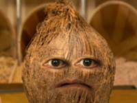 CoconutHFA