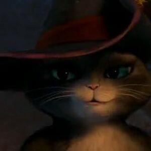Kitty Softpaws Wikishrek Fandom