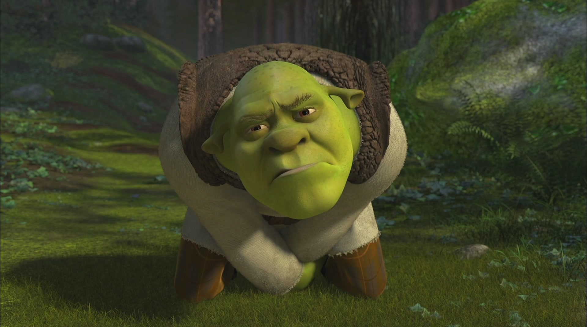 Image Shrek Gonads Jpg Wikishrek Fandom Powered By Wikia