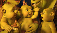 Shrek triplets