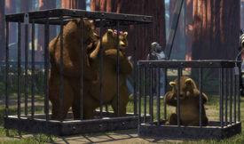 Tragic-three-bears-story-embedded-in-shrek-1-702-1342043773-2 big