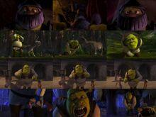 Shrek groin