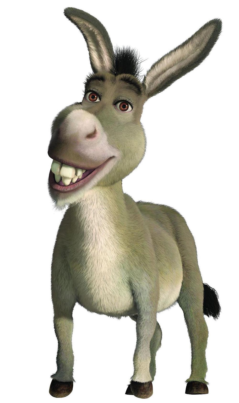 donkey species wikishrek fandom powered by wikia