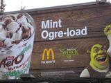 Shrek's Mint Ogre-Load McFlurry