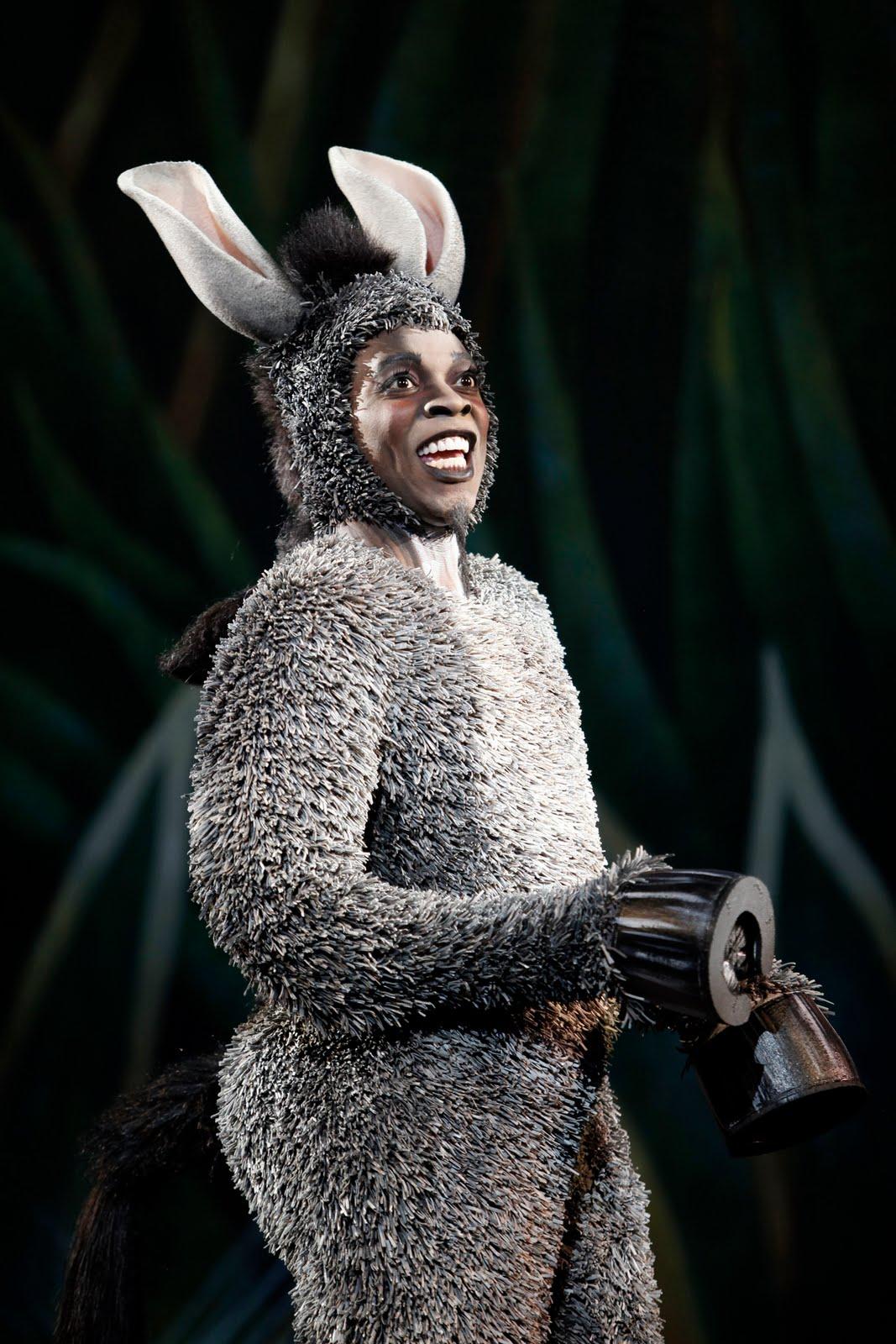 Shrek the Musical Donkey.jpeg  sc 1 st  WikiShrek - Fandom & Image - Shrek the Musical Donkey.jpeg | WikiShrek | FANDOM powered ...