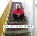 Eye of the Needle cover.png