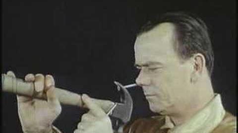 Ripley's Believe It or Not - Hammer Guy