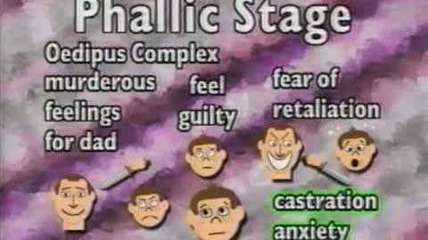 Sigmund freud psychosexual stage theory