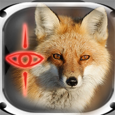 File:FoxDivision.jpg
