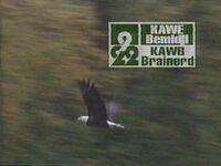 Kawekawb1995