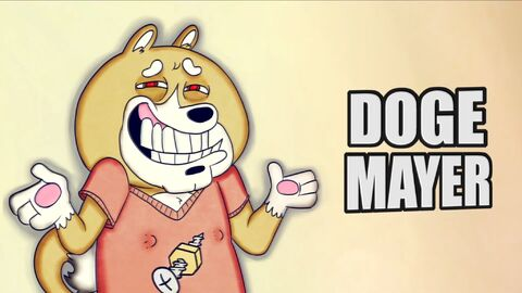 Doge Mayer Intro