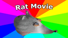 Behind the rat movie