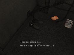 HenryShoes