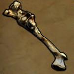 Malformed Bone of Scraper