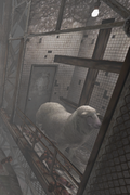 Sheep Room 02
