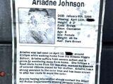 Missing Girl Poster