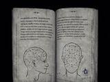Psychology Vol VII – Common Mental Disorders