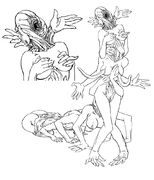 Asphyxia Line Art
