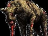 Spürhund