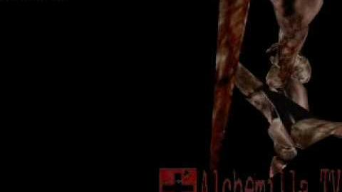 SH3 Secrets and deleted material video