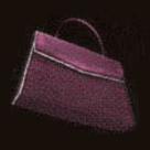 Eileen's Handbag