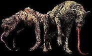 Sniffer Dog5