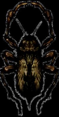 SH2Creeper