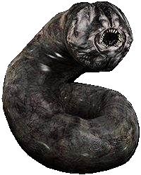 Greedyworm