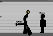 Thumper Size Diagram