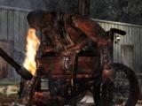 Enigma della Bambola Bruciata