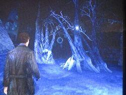 Iceworldforest