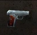 Sauer 38X