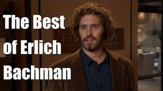 Silicon Valley Season 1-4 The Best of Erlich Bachman