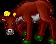 Deermale1D