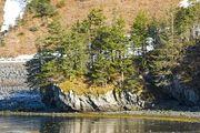 Article-new ehow images a06 g5 s4 obtain-land-alaska-frontier-800x800