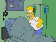 Homer selma coisinhas
