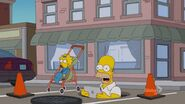 A Tree Grows In Springfield (251)
